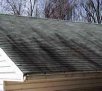 Power Washing and Soft Wash Roof Cleaning, Suffolk County NY